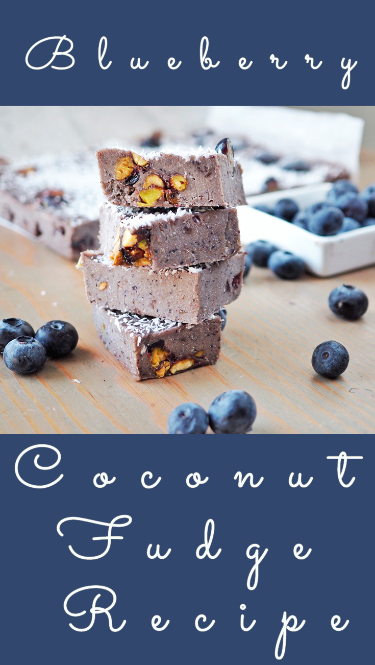 Blueberry Pistachio Coconut Fudge Recipe